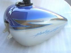 Blue & Champagne 2-Tone Picture